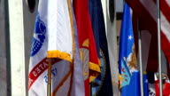 American and all military branch flags waiving video