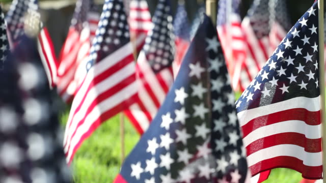 American Flags Blow in Breeze Track Right ECU video