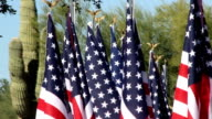 American Flags waiving in desert landscape video