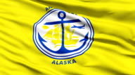 American State City Flag of Anchorage Alaska video