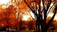American street in autumn video