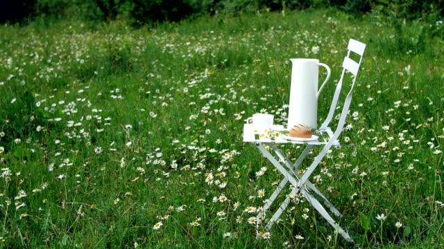 Among the chamomile lawn stands a white chair. On it there is a composition of a white jug, a white cup with tea, a bread and a bouquet of chamomiles video