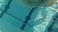 FREESTYLE: An athlete is finishing in a swimming pool (underwater view - action cam) video