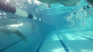 FREESTYLE: An athlete is swimming in a swimming pool video