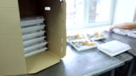 An employee of airline catering facility puts trays of food in a box video