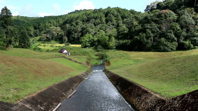 HD: an irrigation canal in a rural tropical field video