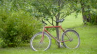 An old bicycle being parked on the tree video
