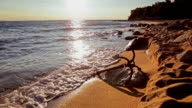 Anchor on a deserted beach video