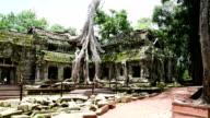 Ancient buddhist khmer temple in Angkor Wat, Cambodia. Ta Prohm Prasat video