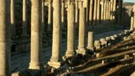 Ancient Stone Colonnade, or Cardo, Jerash, Roman City of Gerasa,  Jordan video