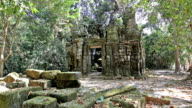 Ancient Temple and Falling Leaves video