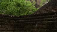 Ancient temple of Sri Lanka video
