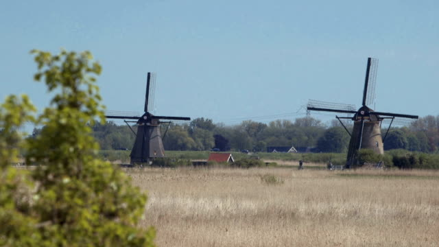 Ancient windmills near Kinderdijk, Netherlands. video