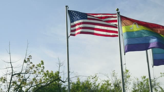 USA and rainbow flags video
