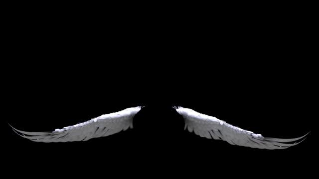 Angel Wings video