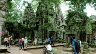 Angkor Taphom video