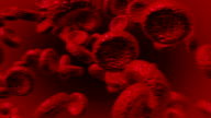 Animated Blood Cells video