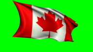 Animated Canadian Flag Waving in The Wind video