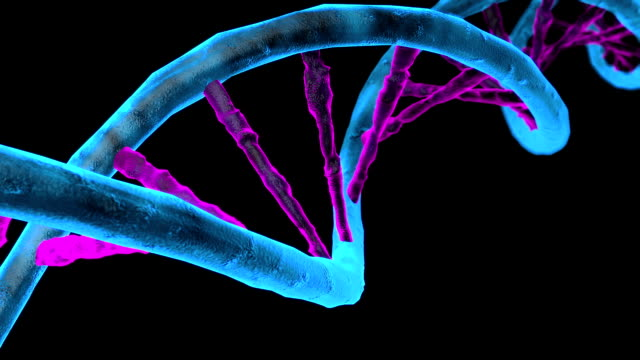 Animated DNA chain. Rotation DNA video