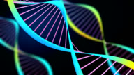 Animated DNA strands video