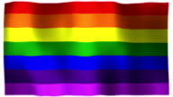 3D Animation of Rainbow Gay Pride Whole Flag Canvas Texture video