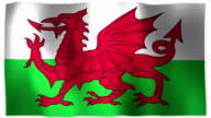 3D Animation of Wales Welsh Whole Flag Canvas Texture video