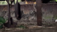 Anitque plow and tractor in disrepair video