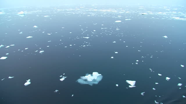 antarctic ice field video