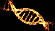 Appearing and dissapearing DNA helix video