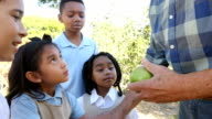 Apple farmer talks to diverse private school elementary students on field trip to apple orchard video