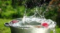 Apple splashing into water in slowmotion video