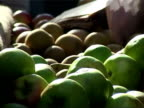 Apples at market video