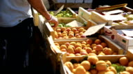 MS Apricots in wooden crates for sale on market stall. video