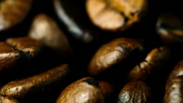 Arabica Coffee beans close-up video
