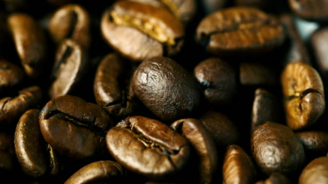 Arabica Coffee beans rotate video