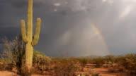 Arizona lightning video