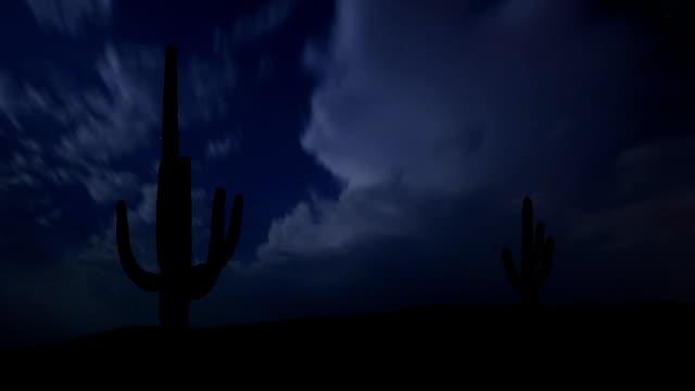 Arizona Saguaro night storm video