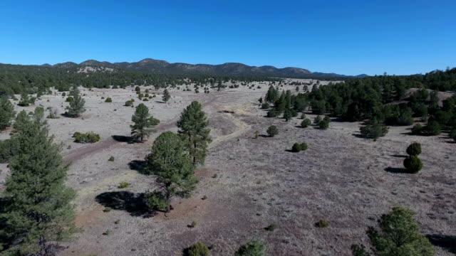 Arizona-New Mexico mountain aerial video