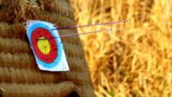 Arrow Hitting Target video