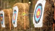 arrow shot at a target video