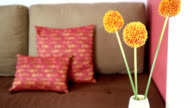 Artificial flower over partial of sofa in modern Living room / interior design & renovation conceptual video