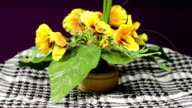 Artificial Flower Rotates video