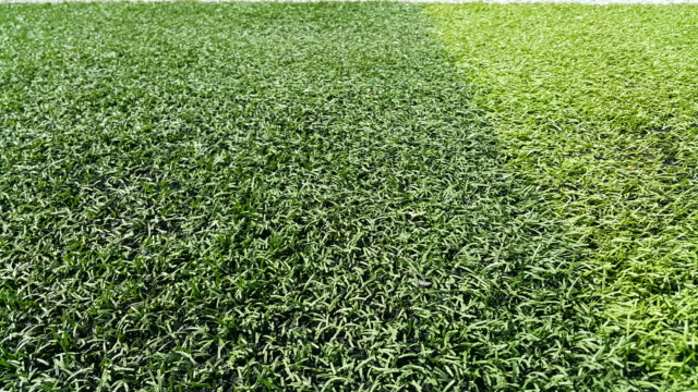 artificial grass football field in Chiang Mai Thailand video