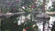 Artificial Lake video