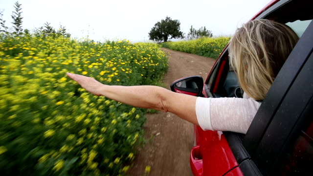 POV as woman extends arm out of car window, rural track video