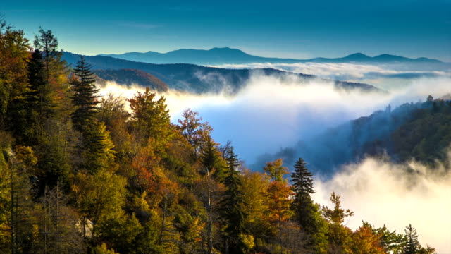 Asheville Autumn Foliage with Moving Mist over Blue Ridge Mountains video