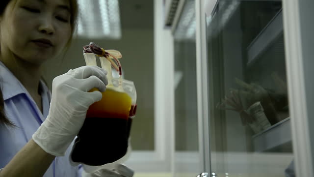 Asia medical technician woman doing quality control of blood bag during storage refrigerator in laboratory hospital video