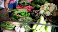 Asian Indian Senior Woman buying Vegetables at Greengrocer's Shop video