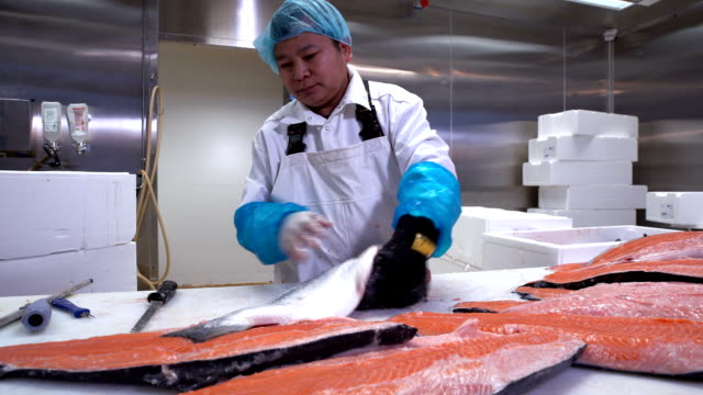 Asian man slicing a fillet of salmon at table on the fish factory. Dolly shot video
