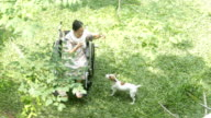 Asian senior woman feedting with dog on her wheelchair video